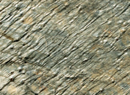 Deoli Green Natural Stone